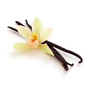 vanille orchidee tahiti gousse